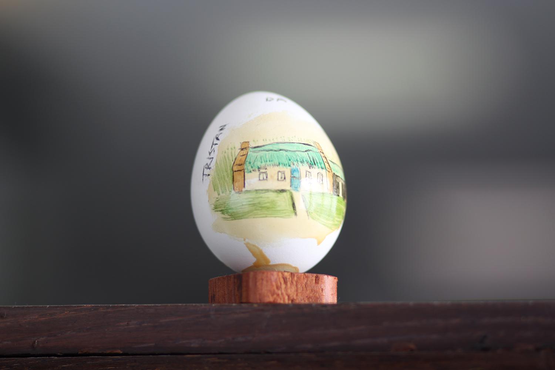 Tristan da Cunha uovo